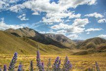 ❤ New Zealand ❤ / Visit New Zealand l New Zealand Travel l solo travel l adventure travel l travel photography