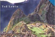 Aztecs, Inca, and Maya / by Rachel Wylie