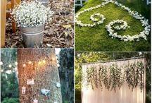 my wedding concept