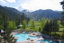 Squaw Valley Tahoe Properties