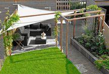 Onze tuin