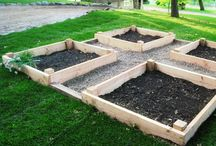 Square foot gardening! / by Staci Wolfe