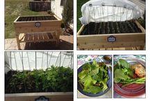 Small Space Garden / A collection of Small Space Garden ideas
