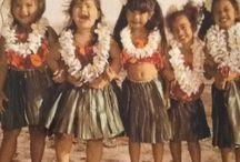 Hawaii-vegg