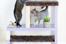 Katzen diy Zubehör