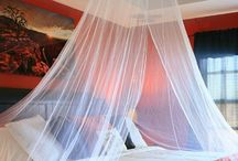 Mosquito Net Inspiration