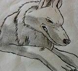 Zeichnungen per Hand / Alle meine Zeichnungen, die ich per Hand erstellt habe
