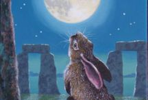 Moon Gazing hare / Beautiful moon gazing hares