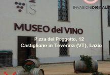 Invasioni digitali 2015 / Nella Tuscia 17 invasioni. Il Museo del vino di #CastiglioneinTeverina  ha ufficialmente aperto le danze! #InvasioniDigitali #InvasioniTuscia