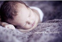 Newborn Photography / by Haley Lowery