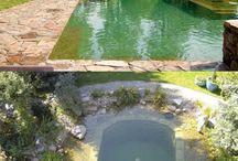 Natural Filter Pools