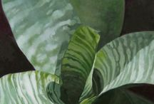 Laurie Flaherty / plant art, contemporary art, color, composition, light and shadow