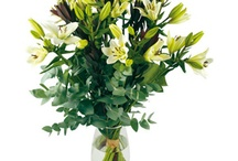 Fleurs vertes / Le vert : espérance, chance, stabilité, concentration.