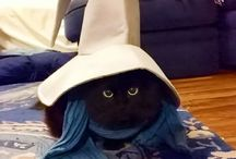 Pets Cosplay