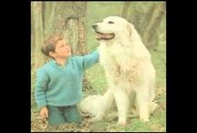 C'était moi Sébastien quand j'était petit, un ange belle, je t'aime très fort est tu sera toujours dans mon cœur pour toute ma vie.je t'aime.