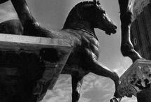 Equestrian sculptures and trophees