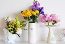 Flowers / by Emilia Lundquist