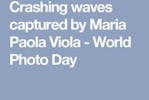 World Photo Day - 2016