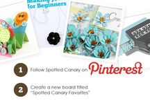 Spotted Canary Favorites / by Tina Steele