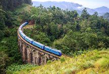 Explore Sri Lanka highlands by train
