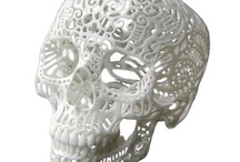 Arnjees Skull Collection / by Kate Angell