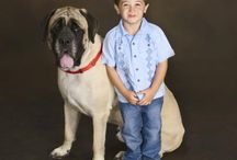 Pet Portraits / Pets are important members of the family too. Bring them along when capturing memories at JCPenney Portraits!  / by JCPenney Portraits