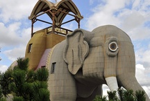 New Jersey Roadside Attractions / World's largest things and other roadside attractions in New Jersey to see on your next road trip.