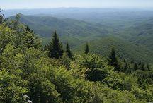 NC Environment & Wildlife