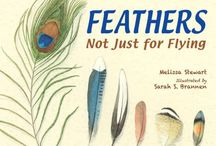 Nonfiction / Nonfiction titles in the library