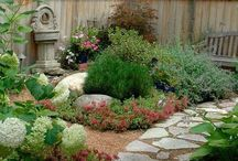 Landscaping ideas / by Judy Ipema