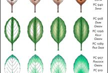 coloring leaves