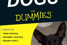 For Dummies Dogs