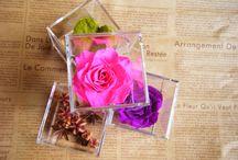Acryl Cube / 6.5センチのアクリルの立方体にお花をアレンジ。 横に並べたり、積み上げたりと様々なディスプレイを楽しめます。