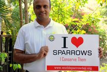 I <3 Sparrows Campaign
