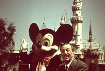 Disney Savvy