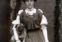 Vintage Pug Pictures