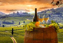 ∞ Viñedos, Uvas, Vinos ∞ / Vineyards, grapes, wines /  vignes, raisins, vin /  vinhedos, as uvas, vinho /  vigne, uva, vino