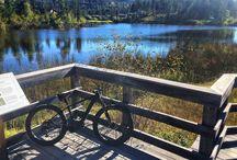 Biking / Biking around the resort!