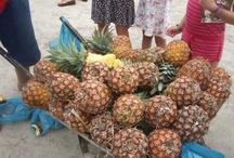 ABACAXI / ADORO ESSA FRUTA!!!  O abacaxi é uma fruta típica de países tropicais e subtropicais, portanto, não se adapta em regiões de clima frio.   É uma fruta com uma boa quantidade de vitamina C, B1 e A.   O abacaxizeiro costuma florescer na época do inverno.