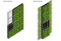 green walls and roof