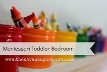 toddler bedroom / by Alexis Jaster
