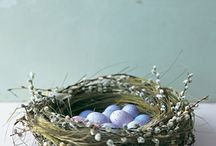 Birds, Cages, Houses, Eggs and  their Nests