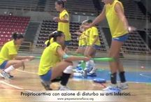 La propriocezione nello sport / Esempi, idee e proposte di applicazione della propriocezione in ambito sportivo