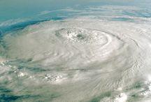 Hurricane Prep Ideas / by Laura Siegel