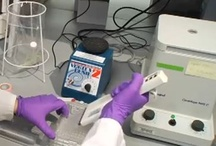From the Lab Bench / The products of hard working scientist in the lab. It's science!