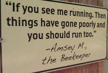Beekeeping !!!!