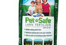 Pet Friendly Gardening / by Kathy Kahn