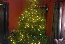 Christmas 2015 / Our biggest Christmas tree ever . . . decorations we haven't seen in years . . . sugared fruit . . .