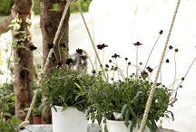Tus pins en tuinen.es- Your pins for tuinen.es / Tablero sobre jardinería, plantas, horticultura, paisajismo, bricojardinería y mucho más!!