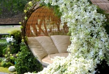 Wow Factor / Large scale floral displays / by Elizabeth Jackson
